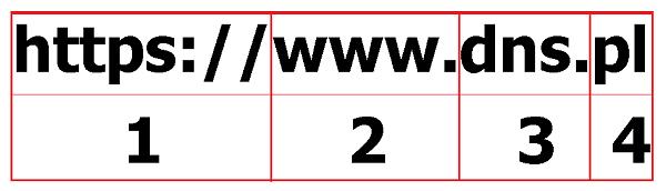 Z czego składa się adres internetowy