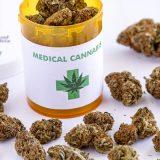 Czy warto zainwestować w medyczną marihuanę