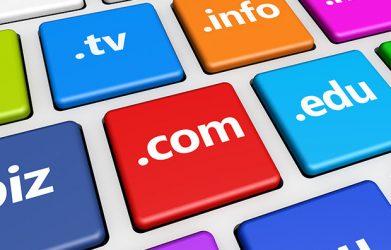 Przechwytywanie domen